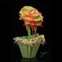 Liquid Flowers by Jack Long