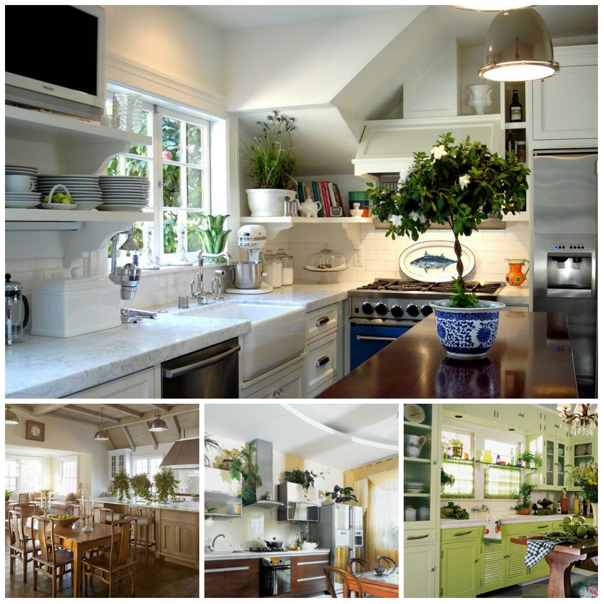 Interior For Kitchen: Potted Flowers In The Interior Of The Kitchen: What To